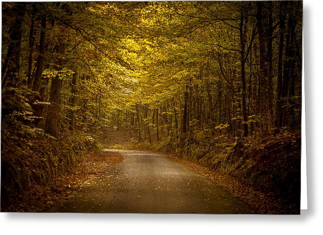 Country Road In Mississippi Greeting Card by T Lowry Wilson