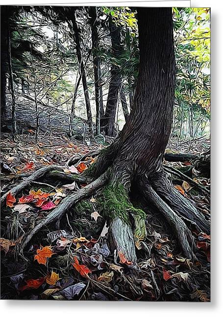 Tree Roots Digital Art Greeting Cards - Ancient Root Greeting Card by Natasha Marco