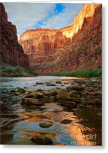 Grand Canyon State Greeting Cards - Ancient Shore Greeting Card by Inge Johnsson