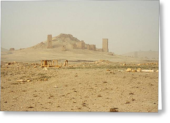 Civilization Greeting Cards - Ancient Tombs On A Landscape, Palmyra Greeting Card by Panoramic Images