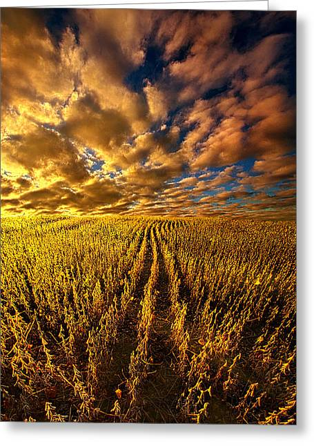 Sunrise Greeting Cards - And So We Dream Greeting Card by Phil Koch
