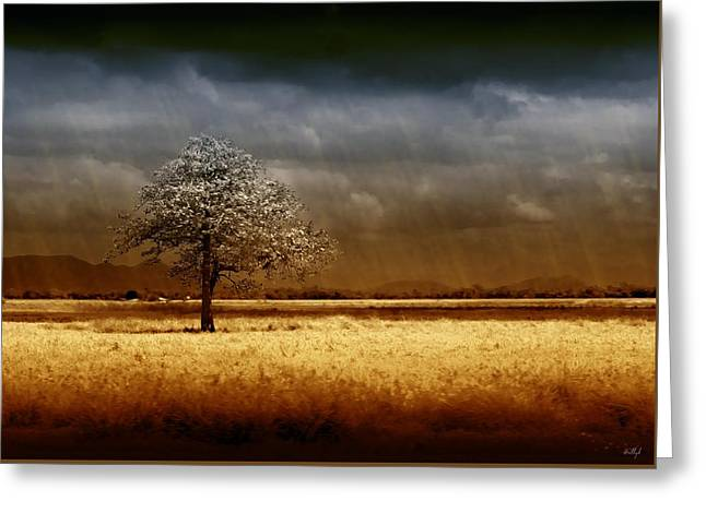 Stormy Clouds Greeting Cards - And the rains came Greeting Card by Holly Kempe