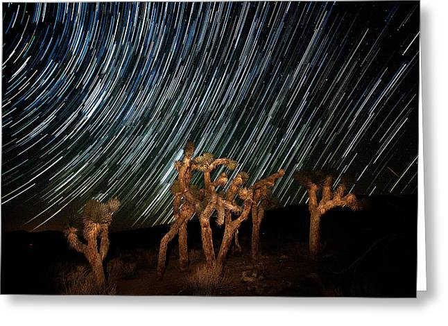 Mojave Desert Greeting Cards - And they Danced Greeting Card by Peter Tellone