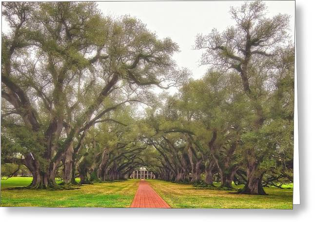 Oak Alley Plantation Greeting Cards - And Time Stood Still Greeting Card by Steve Harrington