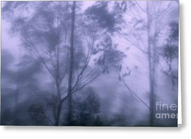 Canadian Photographer Greeting Cards - Andes Fog Mist and Rain Greeting Card by Al Bourassa