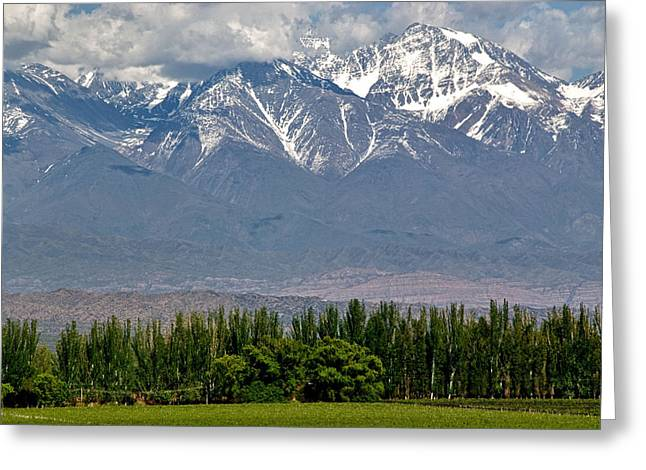 Malbec Photographs Greeting Cards - Andes Mountains and Vineyards Greeting Card by Kevin Bain