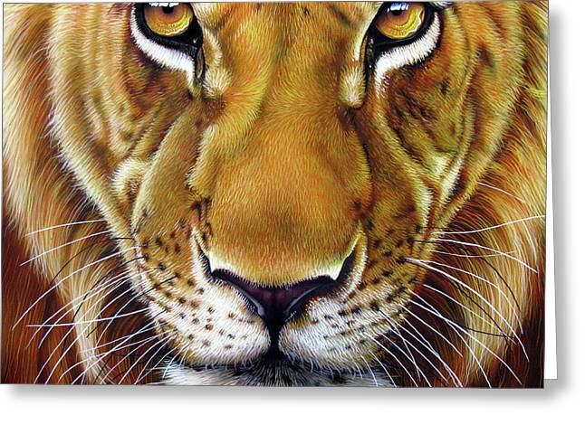 Wildcat Greeting Cards - Andre Lion Greeting Card by Jurek Zamoyski