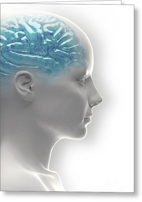 Cerebral Hemisphere Greeting Cards - Android Brain Female Greeting Card by Science Picture Co