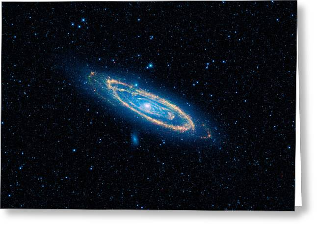 Fireworks Drawings Greeting Cards - Andromeda Galaxy and Companions Greeting Card by Celestial Images