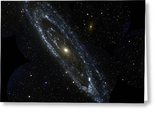 Andromeda Galaxy Greeting Cards - Andromeda Galaxy Greeting Card by Celestial Images