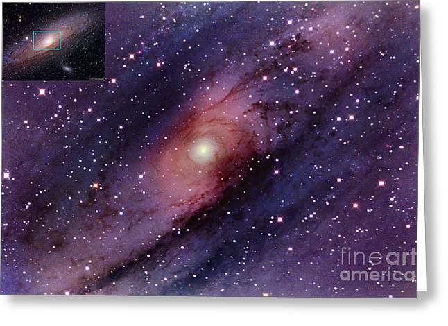 Messier 31 Greeting Cards - Andromeda Galaxy Central Core Greeting Card by John Chumack