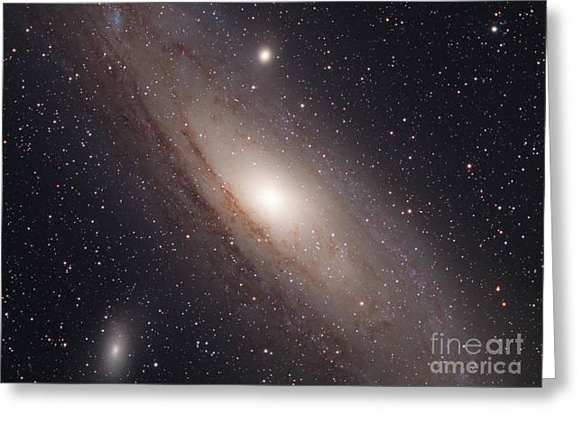 Andromeda Galaxy M31 Greeting Card by Chris Cook