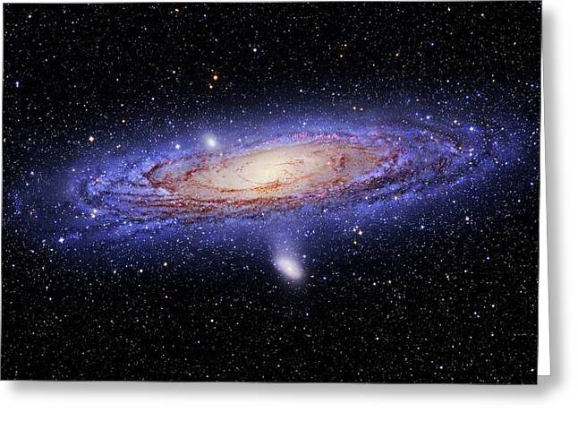 Andromeda Galaxy Greeting Card by Tony & Daphne Hallas