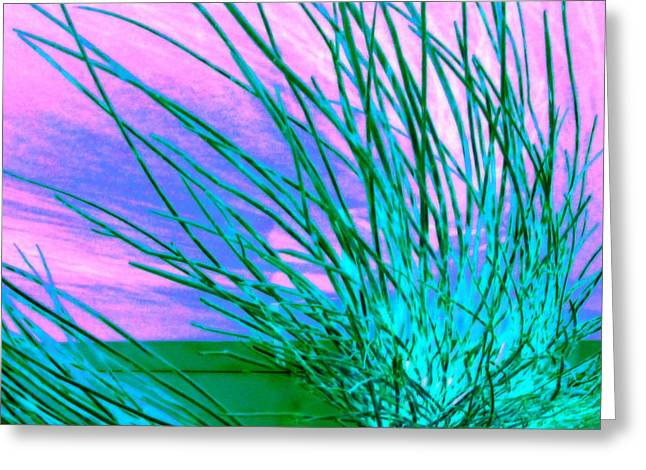 Hair Abstract Art Greeting Cards - Anemone Greeting Card by Randall Weidner