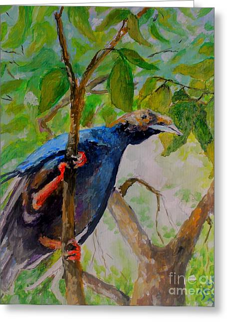 Mangrove Forest Paintings Greeting Cards - Angel Bird of  North Moluccas Greeting Card by Jason Sentuf