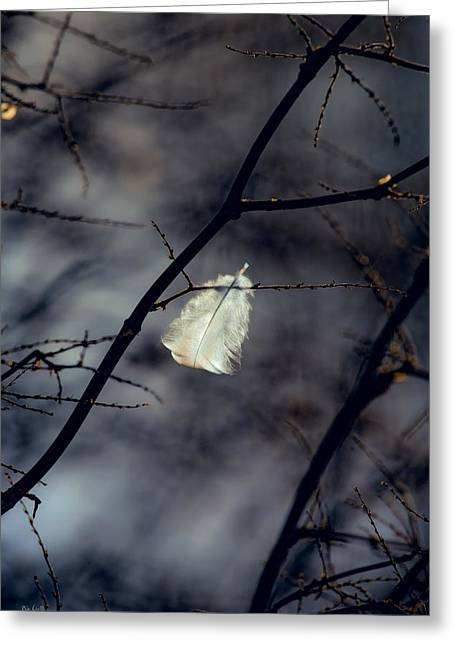 Dreamscape Art Greeting Cards - Angel Feather Greeting Card by Bob Orsillo