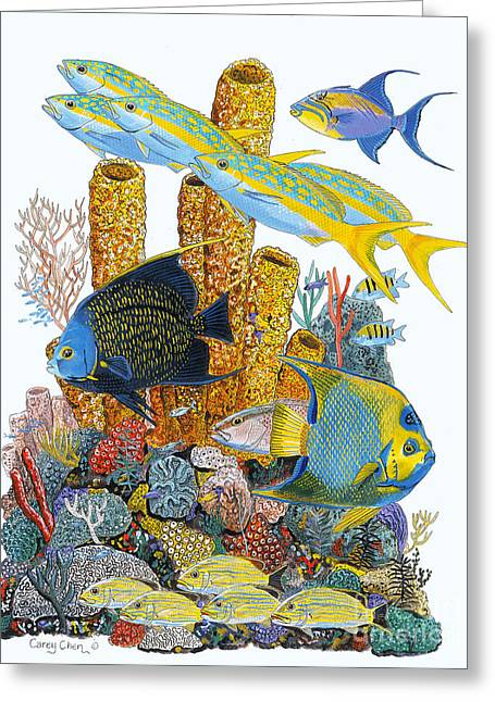 Scuba Diving Greeting Cards - Angel Fish Reef Greeting Card by Carey Chen