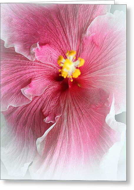 Angelical Greeting Cards - Angel of Paradise Greeting Card by  The Art Of Marilyn Ridoutt-Greene