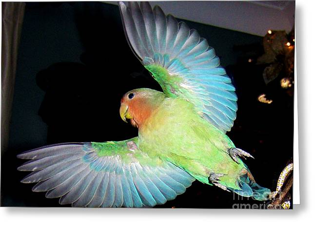 Rosy-faced Lovebird Greeting Cards - Angel Pickle Greeting Card by Terri  Waters