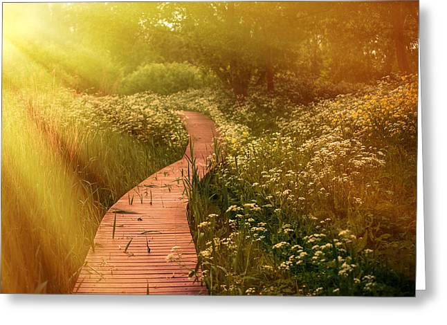 Rainbow Fantasy Art Greeting Cards - Angel Rays. By the Road of Happiness and Love Greeting Card by Jenny Rainbow