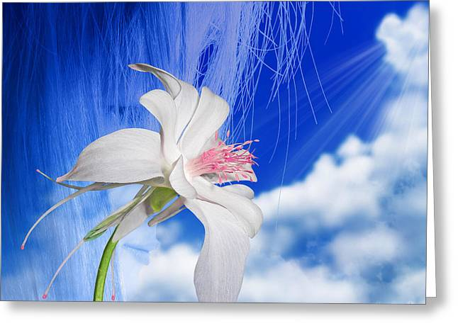 Floral Digital Art Digital Art Greeting Cards - Angel Greeting Card by Torie Tiffany