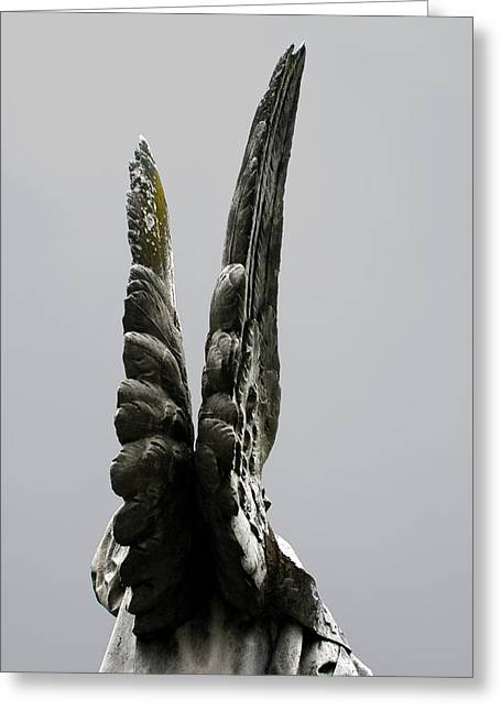 Fredricksburg Greeting Cards - Angel Wings Richmond Fredricksburg Cemetery Series 2006 Greeting Card by John Hanou