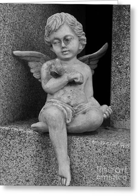 Floral Photographs Sculptures Greeting Cards - Angel With Dove Greeting Card by Nathan Little