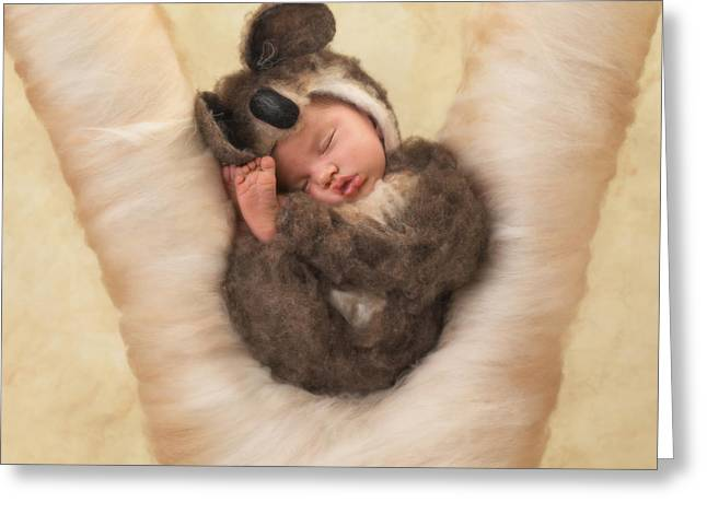Koala Photographs Greeting Cards - Angelina Greeting Card by Anne Geddes