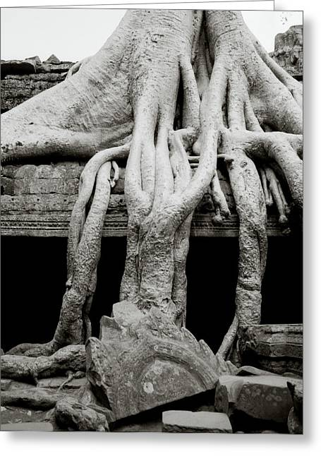 Temple Of Ta Prohm Greeting Cards - Angkor Ta Prohm  Greeting Card by Shaun Higson