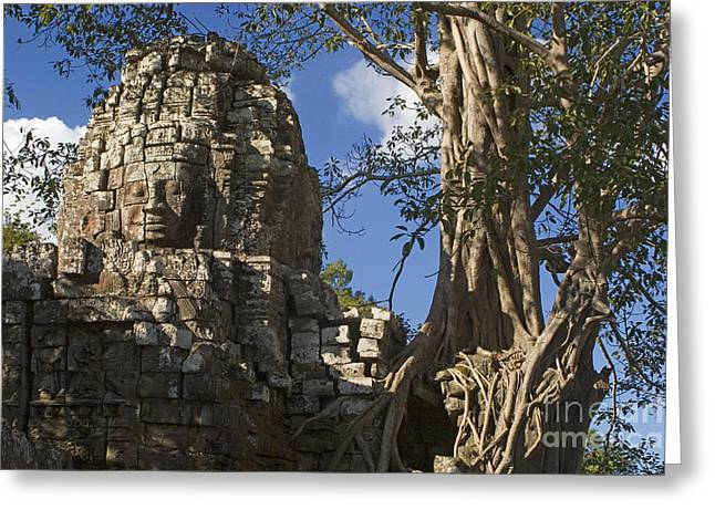 Ficus Aurea Greeting Cards - Angkor Wat Cambodia Greeting Card by Craig Lovell