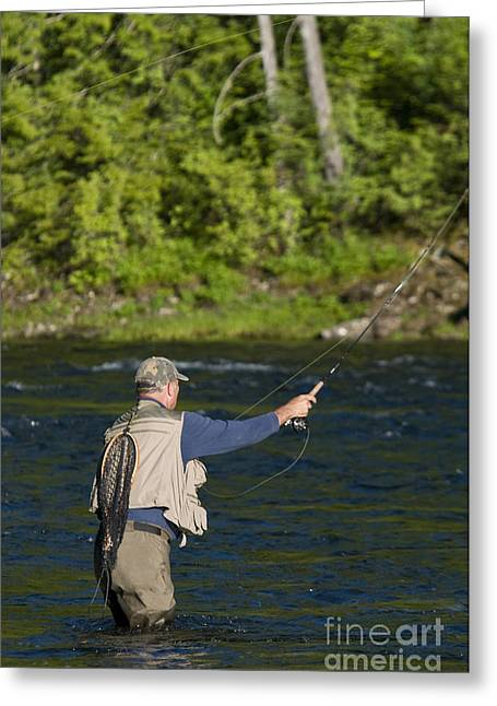 Kelly Photographs Greeting Cards - Angler Fly Fishing, Kelly Creek Greeting Card by William H. Mullins