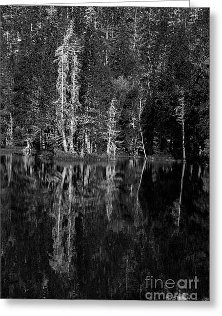 Angora Lakes Greeting Cards - Angora Lake Greeting Card by Misty Tienken