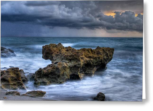 Hobe Sound Greeting Cards - Angry Greeting Card by Debra and Dave Vanderlaan