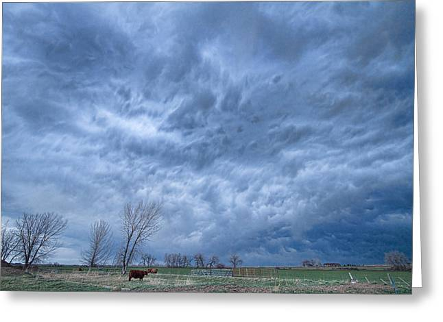 Storm Prints Greeting Cards - Angry Skies Greeting Card by James BO  Insogna