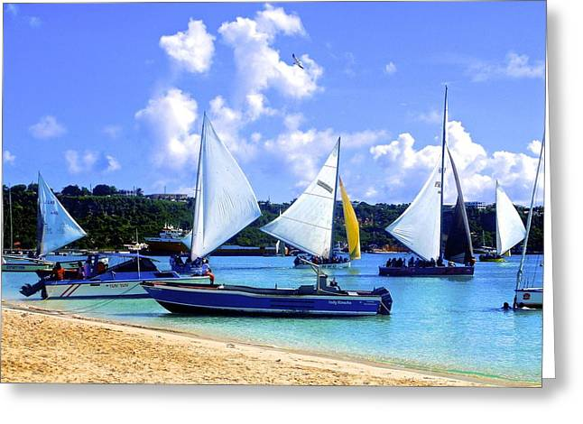 Vaction Greeting Cards - Anguilla boat race Greeting Card by Jennifer Lamanca Kaufman