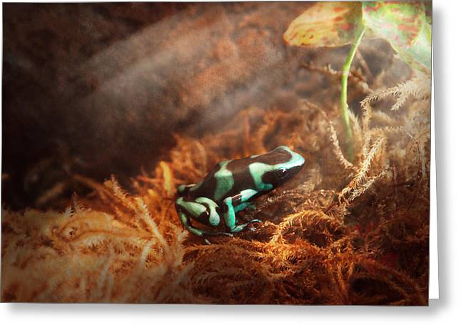 Animal - Frog - Lick The Green Frog Greeting Card by Mike Savad