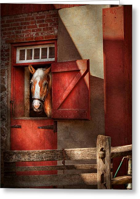 Hdr Look Greeting Cards - Animal - Horse - Calvins house  Greeting Card by Mike Savad