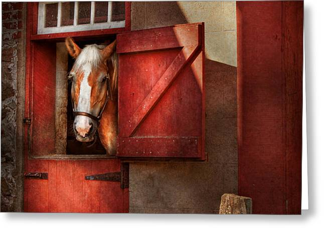 Animal - Horse - Calvins house  Greeting Card by Mike Savad