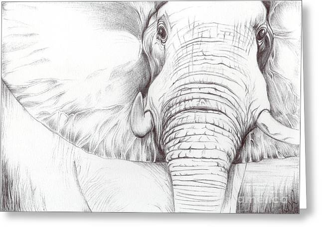Bobbies Greeting Cards - Animal Kingdom Series - Gentle Giant Greeting Card by Bobbie S Richardson