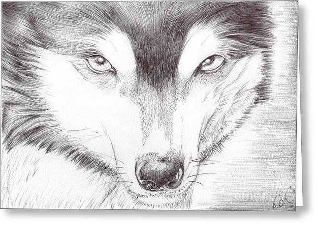 Huskies Drawings Greeting Cards - Animal Kingdom Series - Wild Friend Greeting Card by Bobbie S Richardson