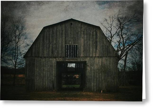 Barn Yard Greeting Cards - Animal Shelter Greeting Card by Tommy Wallace