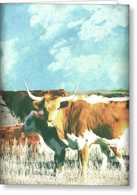 Western Western Photographs Greeting Cards - Animals Cows Longhorn  Greeting Card by Ann Powell
