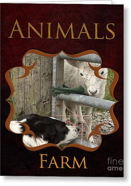 Horse Owner Greeting Cards - Animals on the Farm Gallery Greeting Card by Iris Richardson