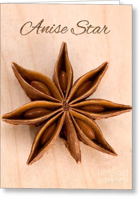 Aniseed Greeting Cards - Anise Star Illicuim verum Single Text Greeting Card by Iris Richardson