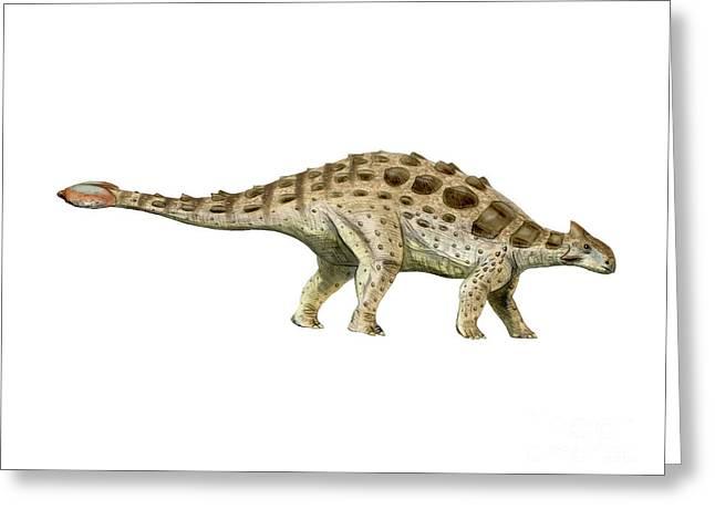 Ankylosaurus Armored Dinosaur Greeting Card by Nobumichi Tamura