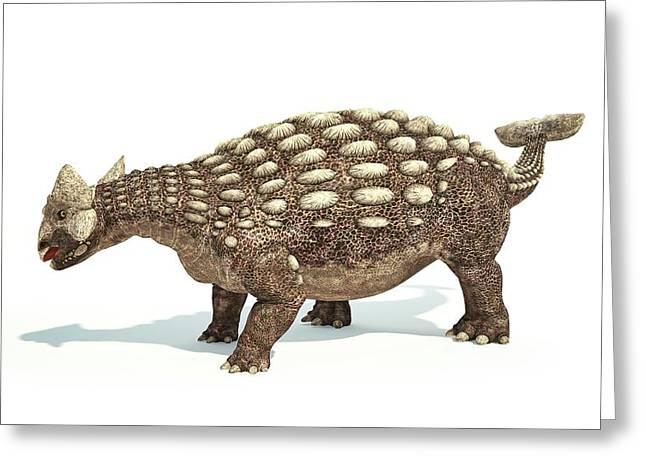 Ankylosaurus Dinosaur Greeting Card by Leonello Calvetti