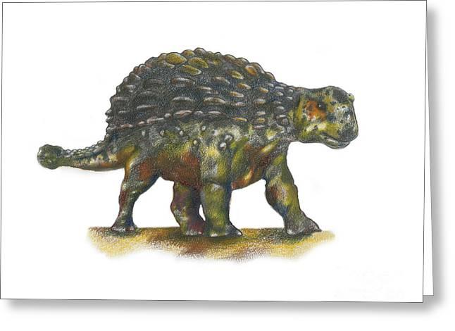 Ankylosaurus Greeting Card by Gwen Shockey
