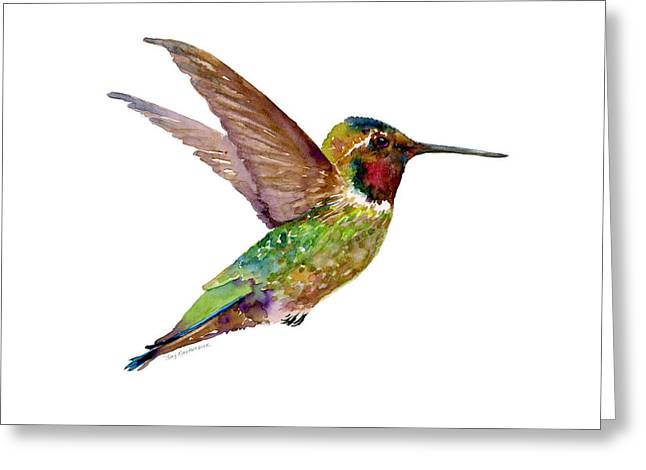 Single Greeting Cards - Anna Hummingbird Greeting Card by Amy Kirkpatrick