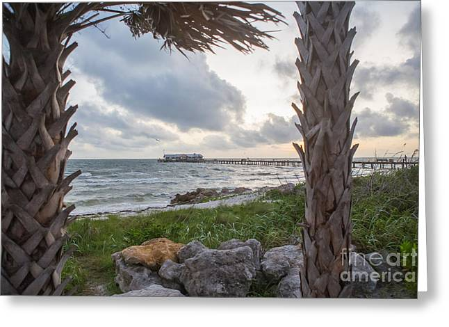 Anna Maria Island Greeting Cards - Anna Maria City Pier Greeting Card by Kay Pickens