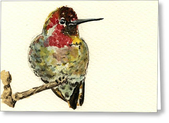 Forest Art Greeting Cards - Anna s hummingbird Greeting Card by Juan  Bosco